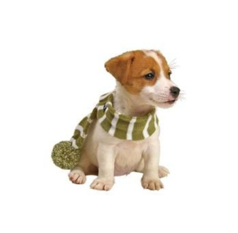 PetRageous Frosty's Snowflake Dog Scarf Brick Red S