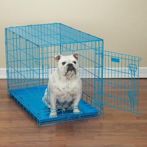 ProSelect Fold-Down Dog Crate in Bright Colors BLUE-DOG-ProSelect-X-SMALL-Pets Go Here