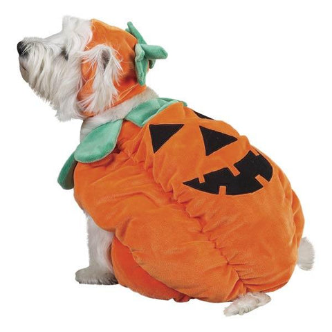 Zack and Zoey Pumpkin Pooch Dog Costume-DOG-Zack & Zoey-LARGE-Pets Go Here costume, l, m, s, test, xl, xs, xxs, yellow, zack & zoey Pets Go Here, petsgohere