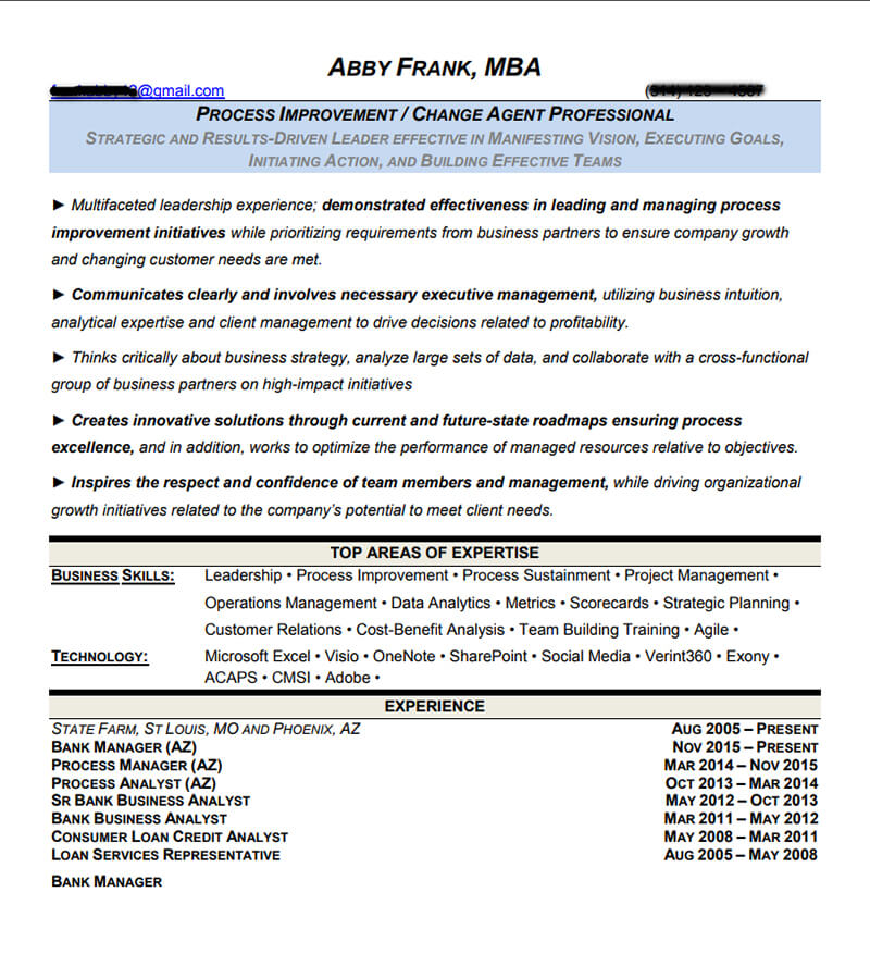 Professional Resumes Examples | Professional And Executive Resume Examples I Top Resume Samples