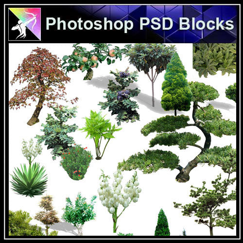 【Photoshop PSD Blocks】Landscape Tree PSD Blocks 8 - Architecture Autocad Blocks,CAD Details,CAD Drawings,3D Models,PSD,Vector,Sketchup Download