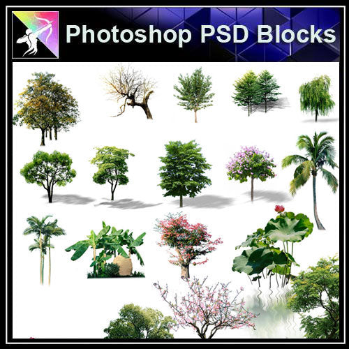 【Photoshop PSD Blocks】Landscape Tree PSD Blocks 10