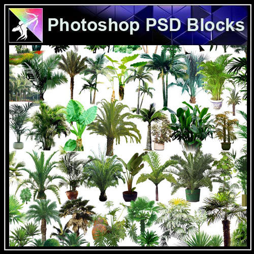 【Photoshop PSD Blocks】Landscape Tree PSD Blocks 5 - Architecture Autocad Blocks,CAD Details,CAD Drawings,3D Models,PSD,Vector,Sketchup Download