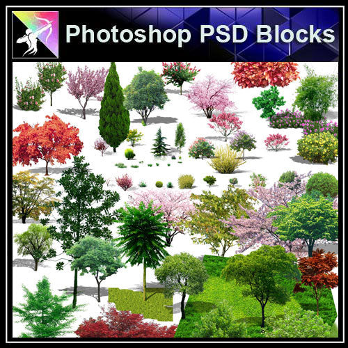【Photoshop PSD Blocks】Landscape Tree PSD Blocks 11 - Architecture Autocad Blocks,CAD Details,CAD Drawings,3D Models,PSD,Vector,Sketchup Download