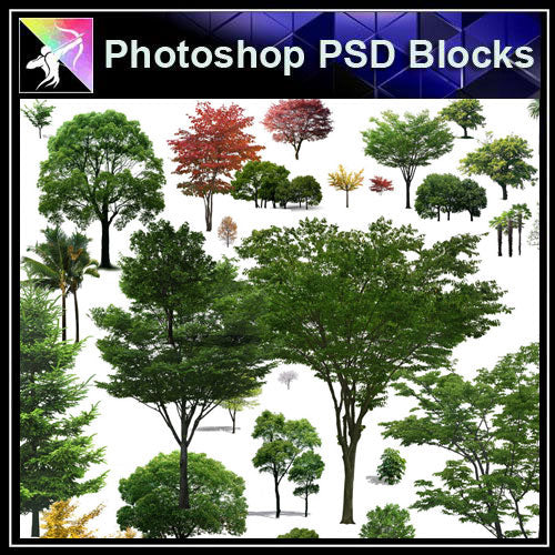 【Photoshop PSD Blocks】Landscape Tree PSD Blocks 13