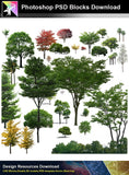 【Photoshop PSD Blocks】Landscape Tree PSD Blocks 13 - Architecture Autocad Blocks,CAD Details,CAD Drawings,3D Models,PSD,Vector,Sketchup Download