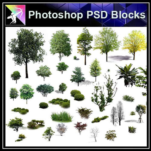 【Photoshop PSD Blocks】Landscape Tree PSD Blocks 17 - Architecture Autocad Blocks,CAD Details,CAD Drawings,3D Models,PSD,Vector,Sketchup Download