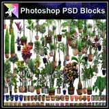 ★Photoshop PSD Blocks-Flower,Tree PSD Blocks 2 - Architecture Autocad Blocks,CAD Details,CAD Drawings,3D Models,PSD,Vector,Sketchup Download