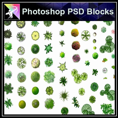★Photoshop PSD Blocks-Tree Plan PSD Blocks - Architecture Autocad Blocks,CAD Details,CAD Drawings,3D Models,PSD,Vector,Sketchup Download