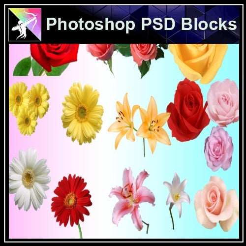 ★Photoshop PSD Decorative Elements-Lose Flower V.1 - Architecture Autocad Blocks,CAD Details,CAD Drawings,3D Models,PSD,Vector,Sketchup Download