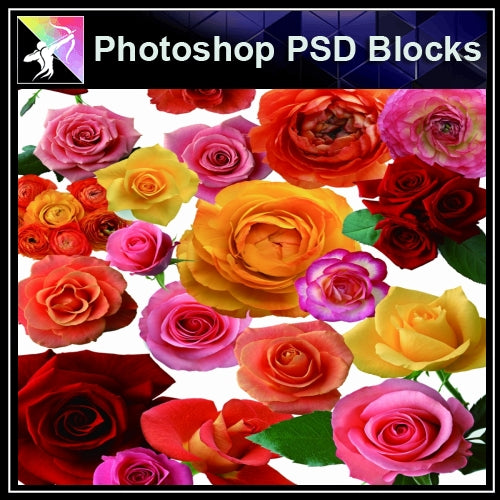 ★Photoshop PSD Decorative Elements-Lose Flower V.2 - Architecture Autocad Blocks,CAD Details,CAD Drawings,3D Models,PSD,Vector,Sketchup Download