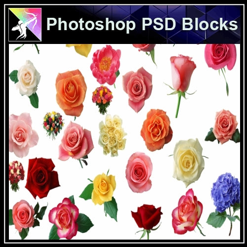 ★Photoshop PSD Decorative Elements-Lose Flower V.3 - Architecture Autocad Blocks,CAD Details,CAD Drawings,3D Models,PSD,Vector,Sketchup Download