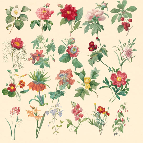 "★★Vintage ""Flower"" PNG + JPG Images, Vintage Flower Clipart ""Flower"" Digital Download Art for Invitations, Scrapbook, Prints,Crafts.."
