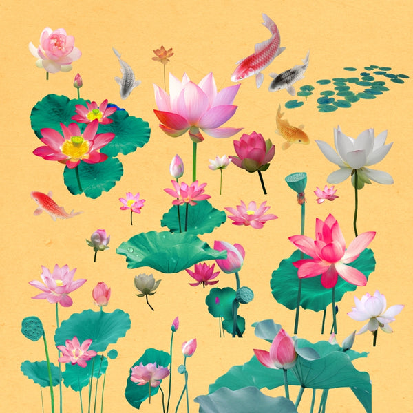 "★★Vintage ""Lotus"" PNG + JPG Images, Vintage Flower Clipart ""Lotus"" Digital Download Art for Invitations, Scrapbook, Prints,Crafts.."