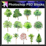 【Photoshop PSD Landscape Blocks】Hand-painted Tree Blocks - Architecture Autocad Blocks,CAD Details,CAD Drawings,3D Models,PSD,Vector,Sketchup Download
