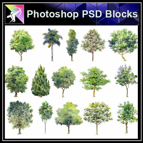 【Photoshop PSD Landscape Blocks】Hand-painted Tree Blocks 2 - Architecture Autocad Blocks,CAD Details,CAD Drawings,3D Models,PSD,Vector,Sketchup Download