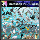【Photoshop PSD Blocks】Bird PSD Blocks - Architecture Autocad Blocks,CAD Details,CAD Drawings,3D Models,PSD,Vector,Sketchup Download