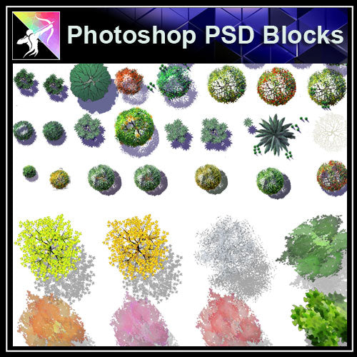 Photoshop PSD Landscape Tree Blocks 4 - Architecture Autocad Blocks,CAD Details,CAD Drawings,3D Models,PSD,Vector,Sketchup Download
