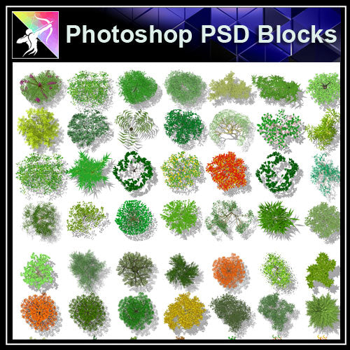 Photoshop PSD Landscape Tree Blocks 5 - Architecture Autocad Blocks,CAD Details,CAD Drawings,3D Models,PSD,Vector,Sketchup Download
