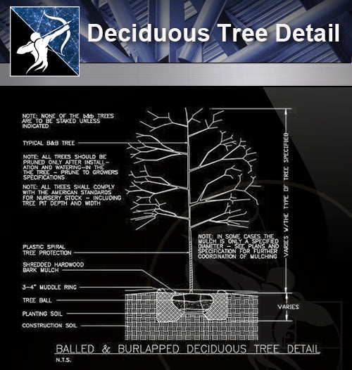 【Roof Details】Free Deciduous Tree Detail - Architecture Autocad Blocks,CAD Details,CAD Drawings,3D Models,PSD,Vector,Sketchup Download