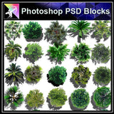 【Photoshop PSD Landscape Blocks】Landscape Tree Blocks 3 - Architecture Autocad Blocks,CAD Details,CAD Drawings,3D Models,PSD,Vector,Sketchup Download