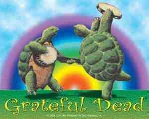 Grateful Dead - Terrapin Turtles Rainbow Sticker - Sticker