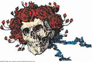 Grateful Dead - Bertha Sticker - Sticker