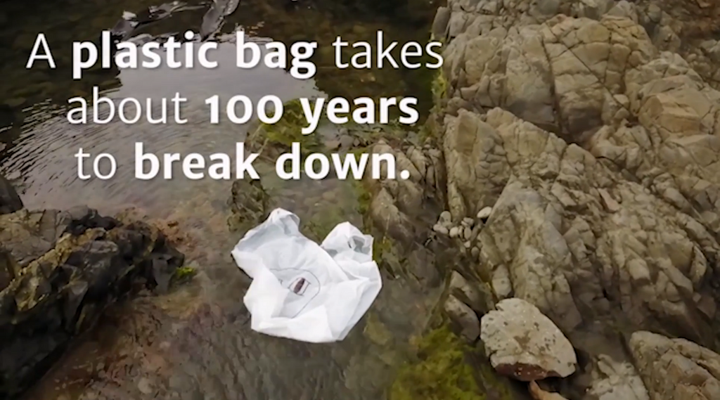 A plastic bag takes about 100 years to break down | ComPlast Eco-friendly Bags, NZ
