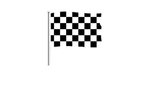 Black and White chequered - Flag Factory