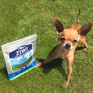 Ziwis Good Dog Rewards: Product Review for Chewy.com