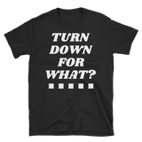 TURN DOWN FOR WHAT? - HILLTOP TEE SHIRTS
