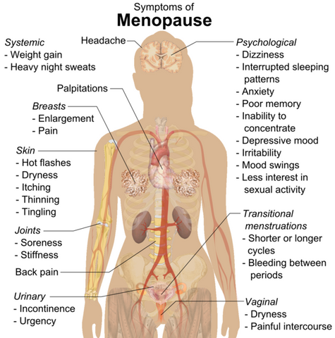 Symptoms of Menopause Infographic