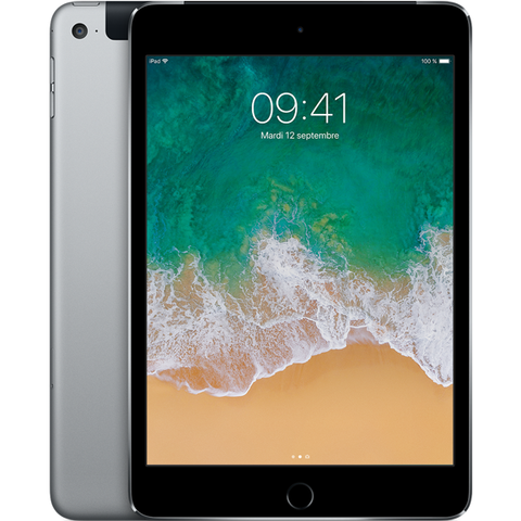 Apple iPad Mini 4 Wi-Fi + Cellular - Gris Sidéral - 16 GB - Écran 7.9'' - Occasion reconditionné - Grade Diamond