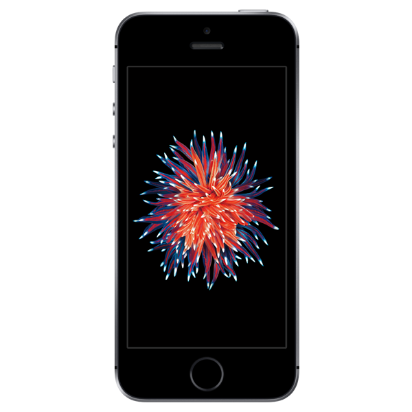 Apple iPhone SE - Gris Sidéral - 16 GB - Écran 4.7'' - Occasion reconditionné - Grade Ruby