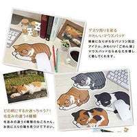 Cat Mouse Pad | Brown