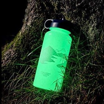 *NEW* Glow in the Dark Water Bottle | 700ml | 正價