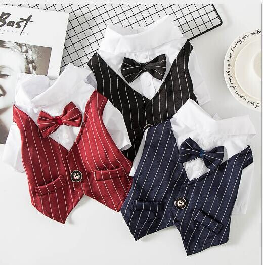 Dog Pet Wear | Suit | 正價 (4796831367242)