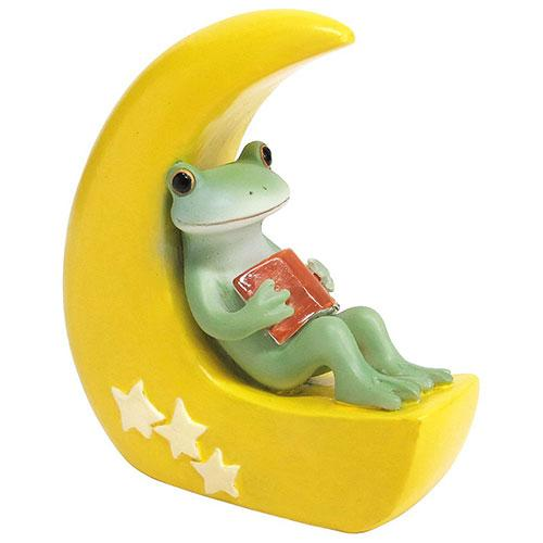 Copeau Display | 72257 | Frog Sit on the Moon