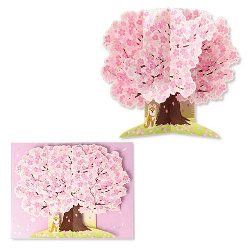 Cherry Blossom Card (4502429859914)