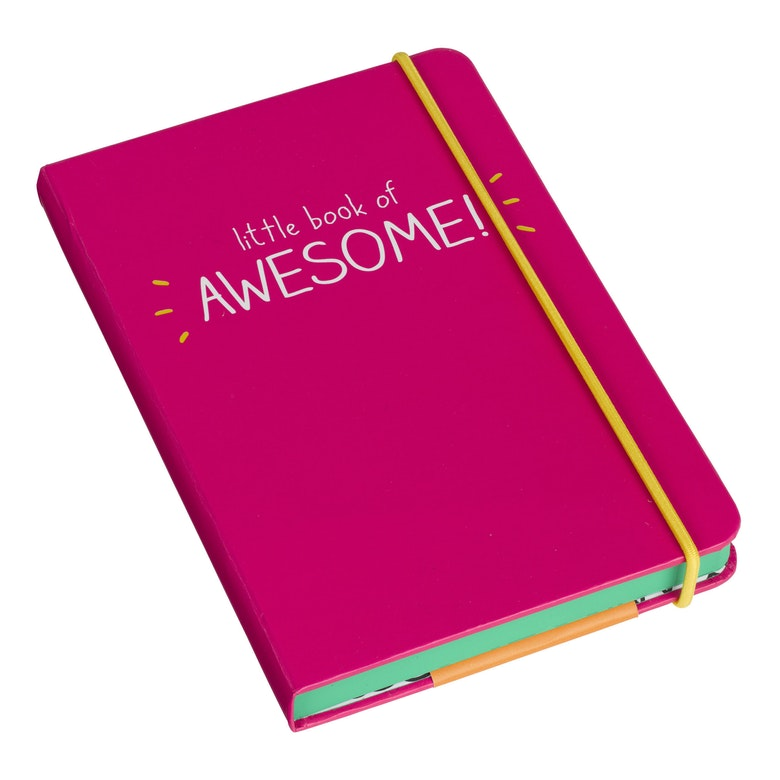 A6 Little Book of Awesome Notebook | Pink
