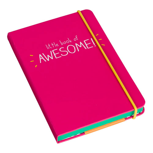 A6 Little Book of Awesome Notebook | Pink (325813665803)