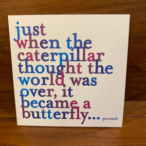 D54 - Just when the caterpillar