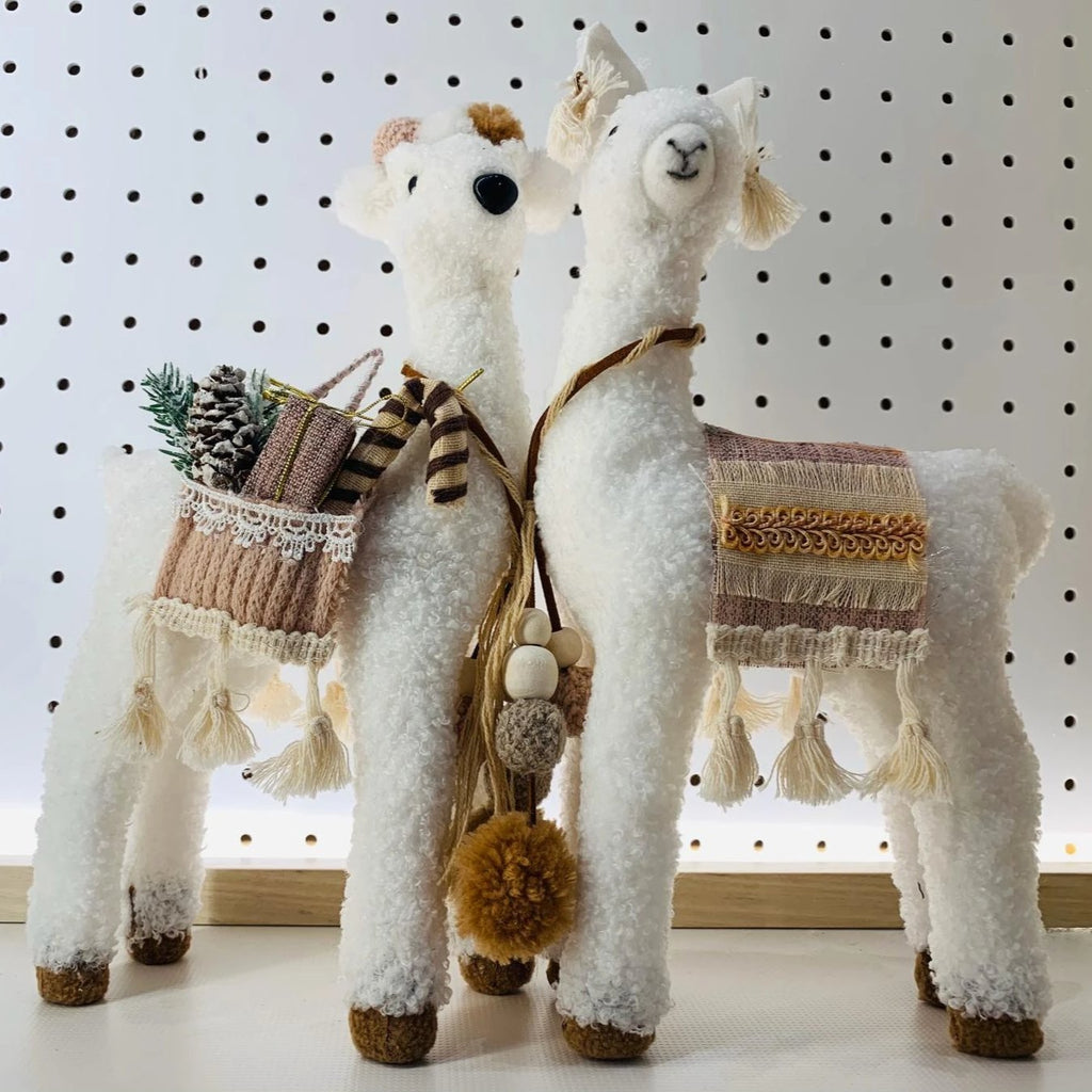 Alpaca Display | B