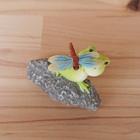 Frog Display | Dragonfly | 正價