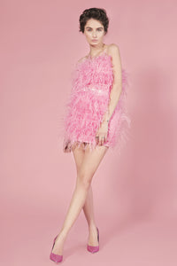 Moulin Rouge pink feathers dress
