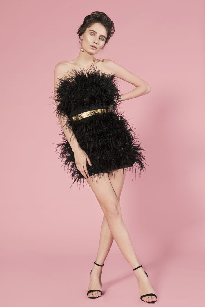 Moulin Rouge black feathers dress