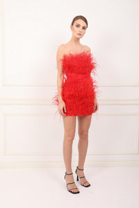 Moulin Rouge lavander feathers dress
