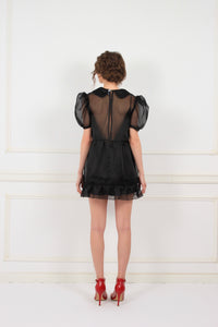 Irene silk organza sheer mini dress