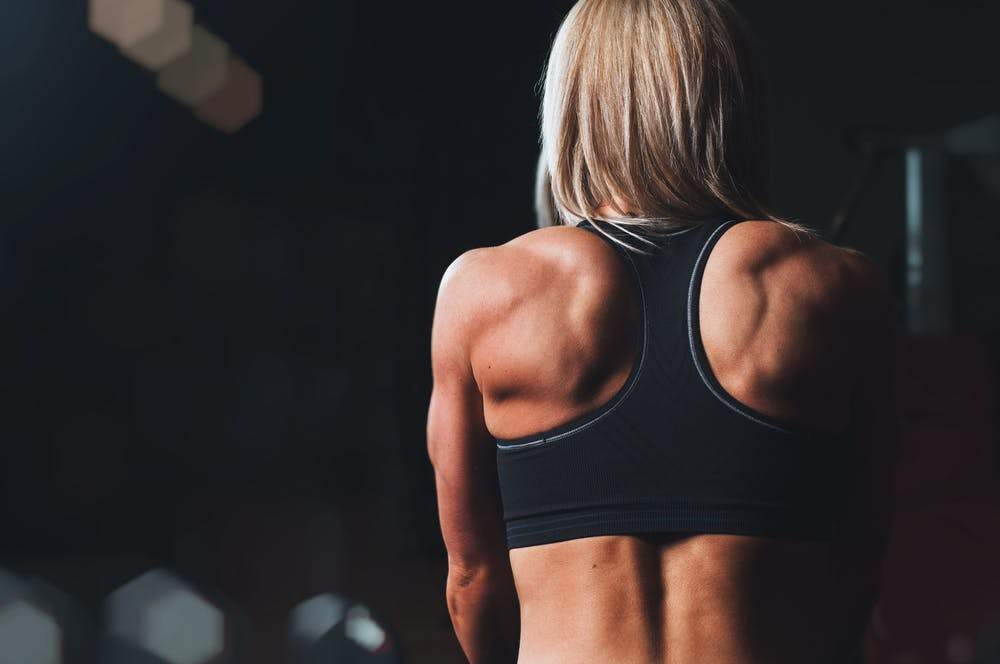 Back Muscle Anatomy To Improve Your Workout Routine