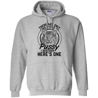 """Types of Pussy"" Pullover Hoodie"